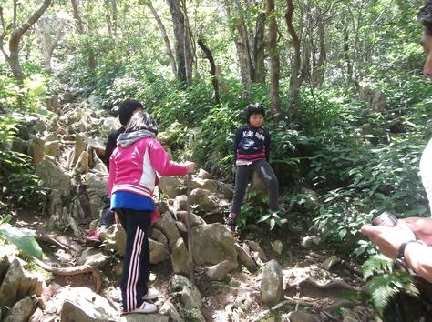 山登り_f0213709_11431289.jpg