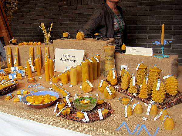 Palau Sant Jordiのエコロジー展_b0064411_5345592.jpg