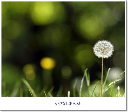 b0137412_15411115.jpg