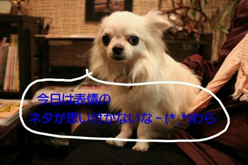 b0130018_21235314.jpg