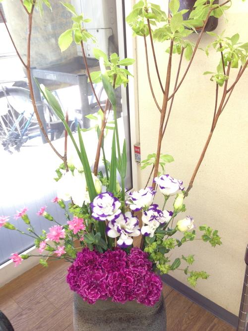 今週のお花とセール情報_a0200423_10302326.jpg