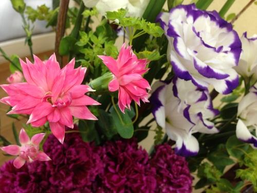 今週のお花とセール情報_a0200423_10311737.jpg