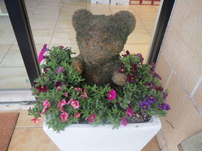 菜の花漬_c0223630_0193423.jpg
