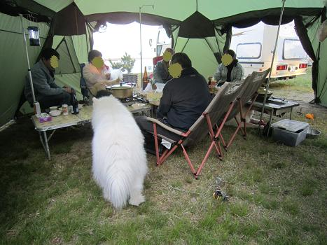 キャンプにお邪魔しました~!_b0177436_18174240.jpg