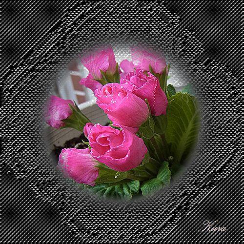 b0133752_23524981.jpg