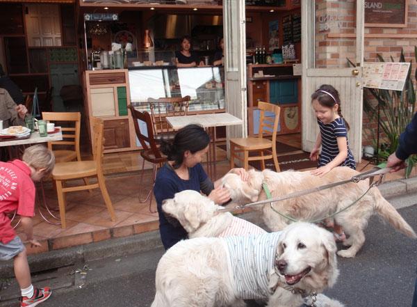 美味しいカフェ見っけ!_c0110361_1620015.jpg