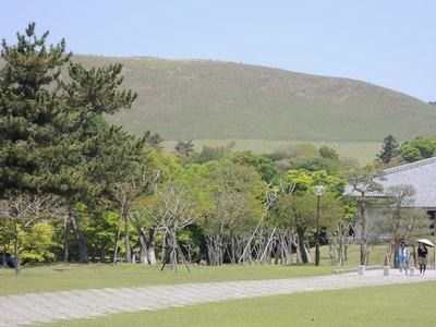 若草山へハイキング_b0252363_18293124.jpg