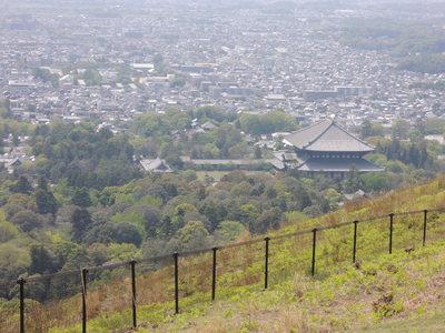 若草山へハイキング_b0252363_18405965.jpg