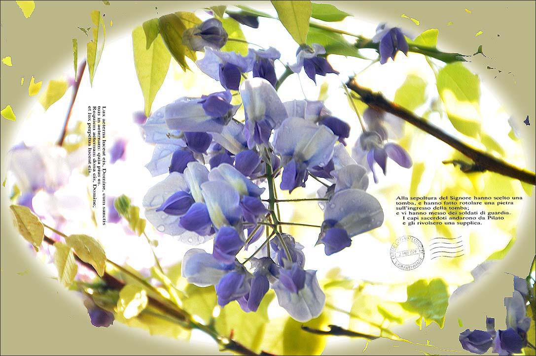f0198771_0124010.jpg