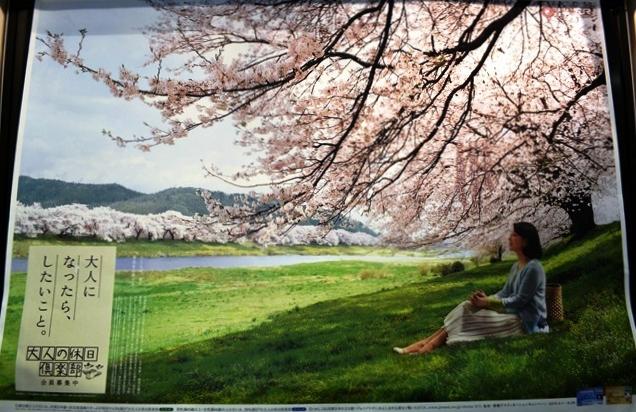 祝 ピーチ 関空~仙台就航!桜を追って、仙台・宮城へ!②_b0053082_1925798.jpg