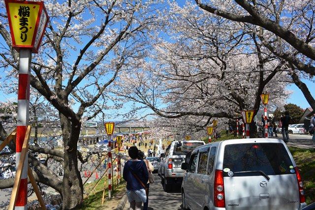 祝 ピーチ 関空~仙台就航!桜を追って、仙台・宮城へ!②_b0053082_1937017.jpg