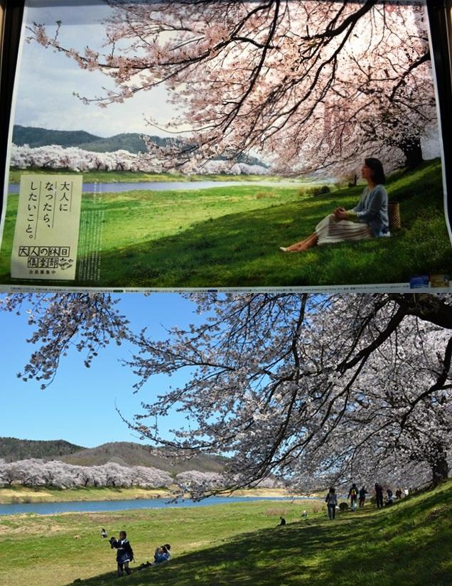祝 ピーチ 関空~仙台就航!桜を追って、仙台・宮城へ!②_b0053082_1954559.jpg