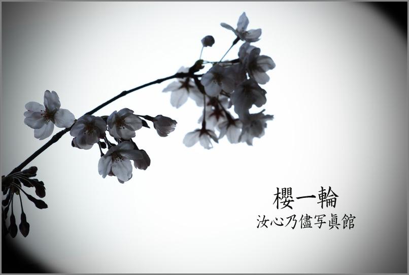 f0215487_1562164.jpg