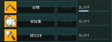e0055703_1145080.jpg