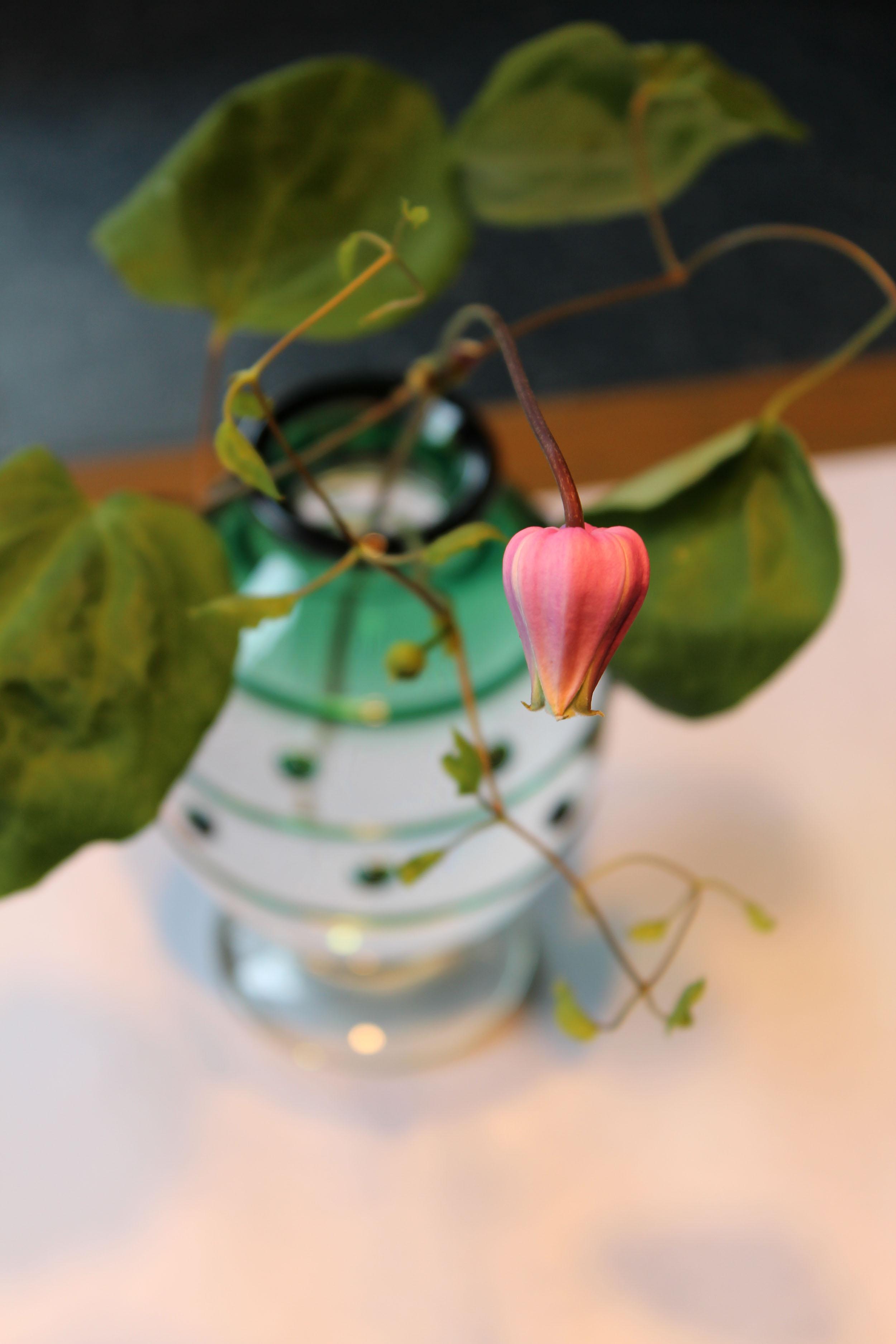 舩木倭帆  斑点文花瓶 緑_c0237627_20251014.jpg