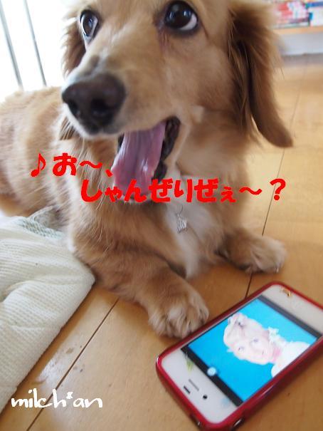 b0115642_0562471.jpg