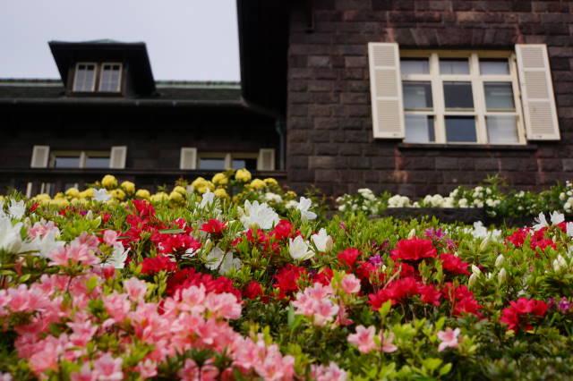 旧古河庭園_a0257652_012233.jpg