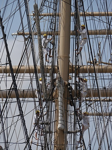 2013長崎帆船まつりとペンギン水族館 その2_b0175688_21565697.jpg