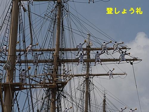 2013長崎帆船まつりとペンギン水族館 その2_b0175688_21581145.jpg