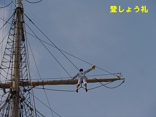 2013長崎帆船まつりとペンギン水族館 その2_b0175688_21582257.jpg
