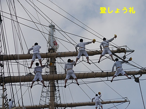 2013長崎帆船まつりとペンギン水族館 その2_b0175688_21583746.jpg