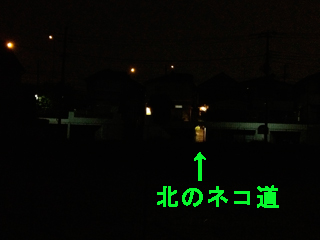 c0211810_1027927.jpg