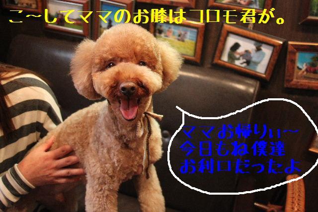b0130018_3401525.jpg