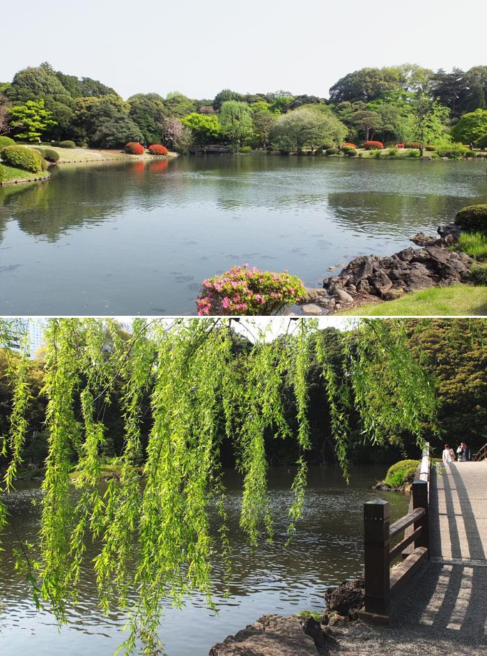 新宿御苑とビストロ_f0038727_1834531.jpg