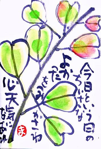 f0179357_209113.jpg