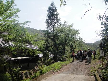 孝子の森の植物観察  &  ボランティア3グループ交流会_c0108460_2125941.jpg