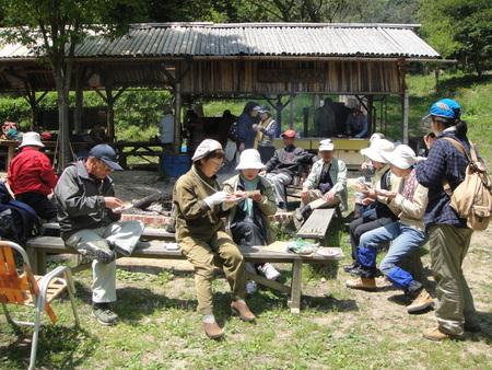 孝子の森の植物観察  &  ボランティア3グループ交流会_c0108460_21315848.jpg