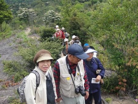 孝子の森の植物観察  &  ボランティア3グループ交流会_c0108460_21355546.jpg