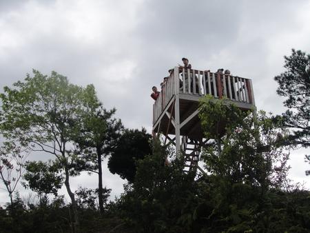孝子の森の植物観察  &  ボランティア3グループ交流会_c0108460_21372399.jpg