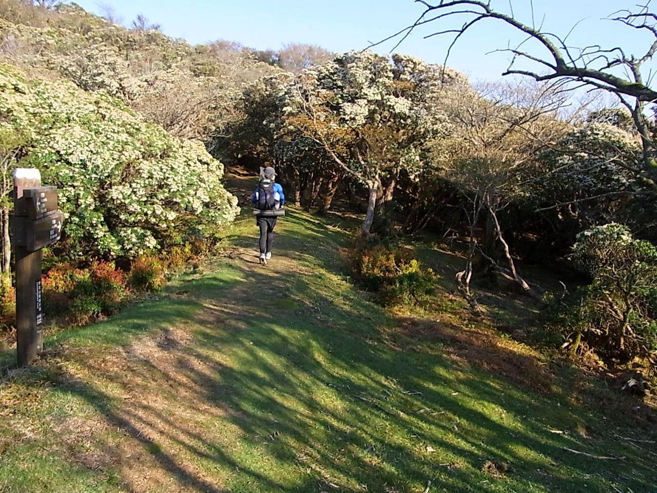 2013.4.27-28 伊豆ファストパッキング day1 (戸田峠-三蓋山)_b0219778_16352.jpg