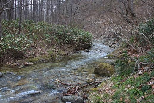 きこりの森に下見に行ってきました_f0227395_18103139.jpg