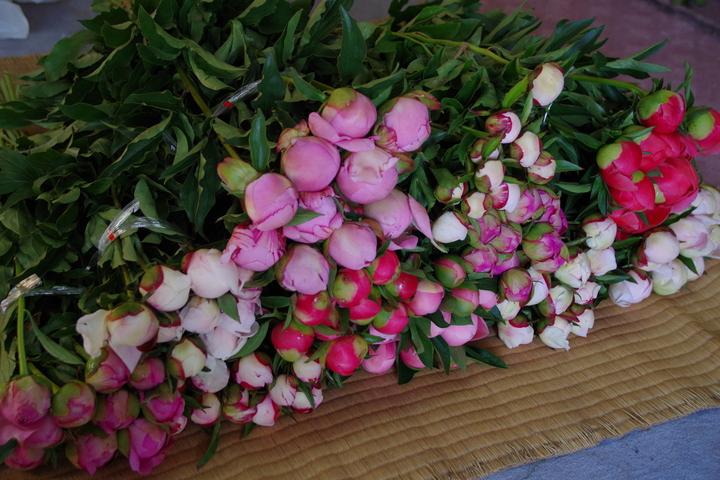 芍薬の花箱、ブーケ、毎日出荷中です。_f0162400_11142367.jpg