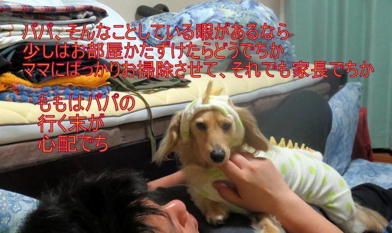 f0224506_1956224.jpg