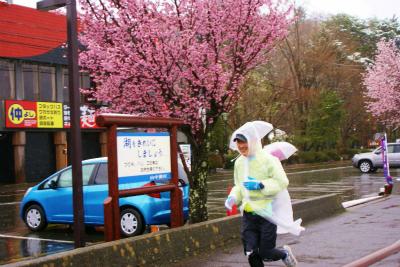 チャレンジ富士五湖ウルトラマラソン_a0036808_165974.jpg