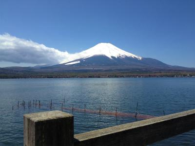 チャレンジ富士五湖ウルトラマラソン_a0036808_17282849.jpg