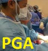 胸腔鏡下ブラ切除術後の気胸再発抑制のためポリグリコール酸(PGA)シート(ネオベール)被覆追加は有用_e0156318_17233259.jpg