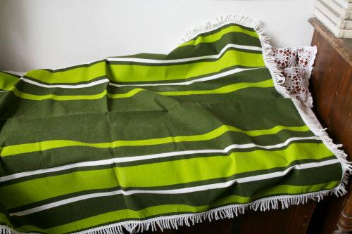 ::: Summer Green Collection :::_b0142544_16205792.jpg
