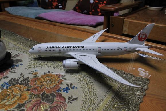 ANA JAL B787-8 ドリームライナー_d0202264_16364328.jpg