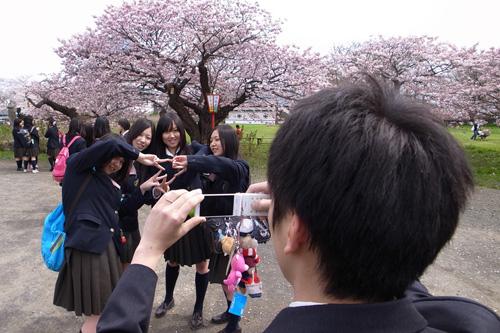 松前桜まつり_b0108779_2293347.jpg