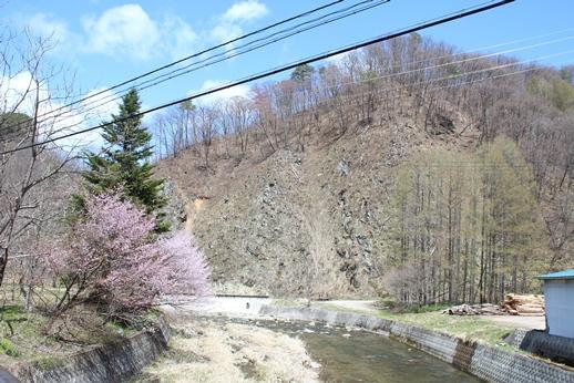 気づけば桜が・・・_f0227395_1833386.jpg