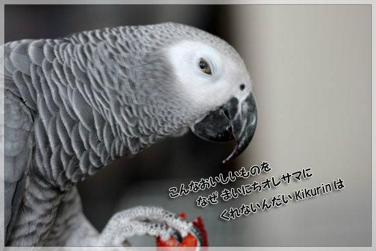 e0235910_636216.jpg