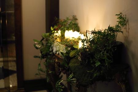 シェ松尾青山サロン様の装花 森のように、ティモテのCMのように_a0042928_9425075.jpg