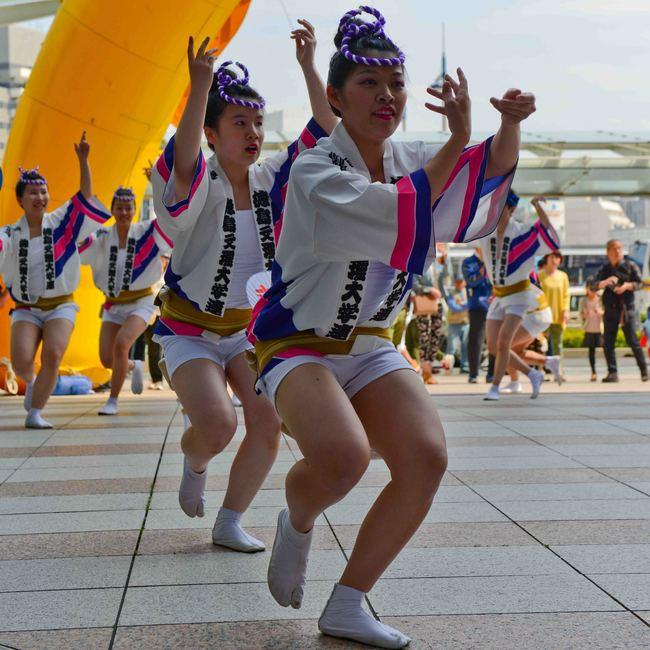 四国の祭 2013 徳島文理大学連_d0246136_23245725.jpg