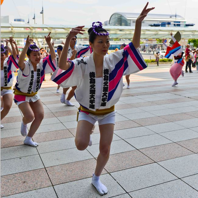 四国の祭 2013 徳島文理大学連_d0246136_23251750.jpg