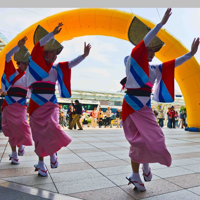 四国の祭 2013 徳島文理大学連_d0246136_23253688.jpg