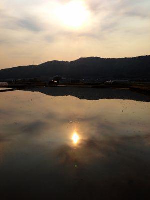 日本の風景_d0259861_7523863.jpg